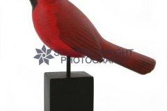 cardinalfacingleft2