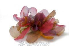 chiffonflowercloseup2